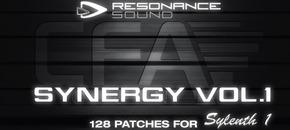 Synergy1 1000x512 original