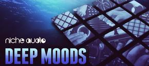Niche deep moods 1000 x 512