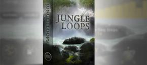 Jungle loops main image pluginboutique
