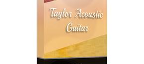 Taylor acoustic guitar main image