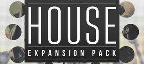 Pib zampler house 800x800 pluginboutique