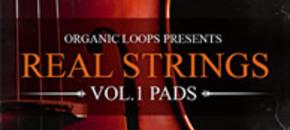 Realstrings banner sml