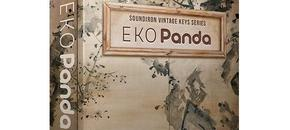 Eko panda 3d box website 1024x1024 pluginboutique