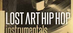 Rv lost art hiphop 1000 x 1000 pluginboutique